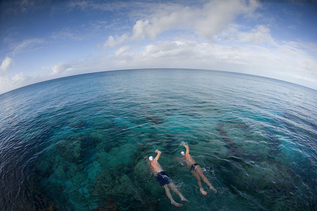 all of 7 oceans swim